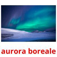 aurora boreale picture flashcards