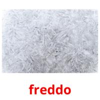 freddo picture flashcards