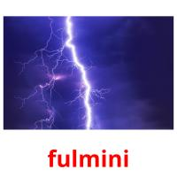 fulmini picture flashcards