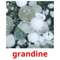 grandine picture flashcards