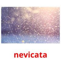nevicata picture flashcards