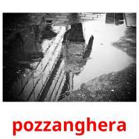pozzanghera picture flashcards