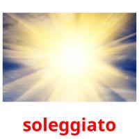 soleggiato picture flashcards