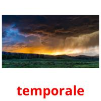 temporale picture flashcards