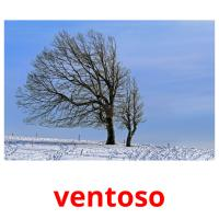 ventoso picture flashcards
