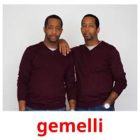 gemelli picture flashcards
