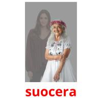 suocera picture flashcards