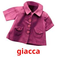 giacca picture flashcards