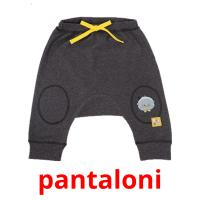 pantaloni picture flashcards