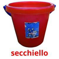 secchiello picture flashcards
