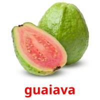 guaiava picture flashcards