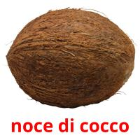 noce di cocco card for translate