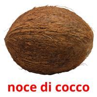 noce di cocco picture flashcards