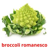 broccoli romanesco picture flashcards