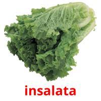 insalata picture flashcards