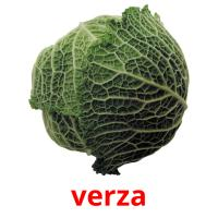 verza picture flashcards