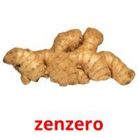 zenzero picture flashcards