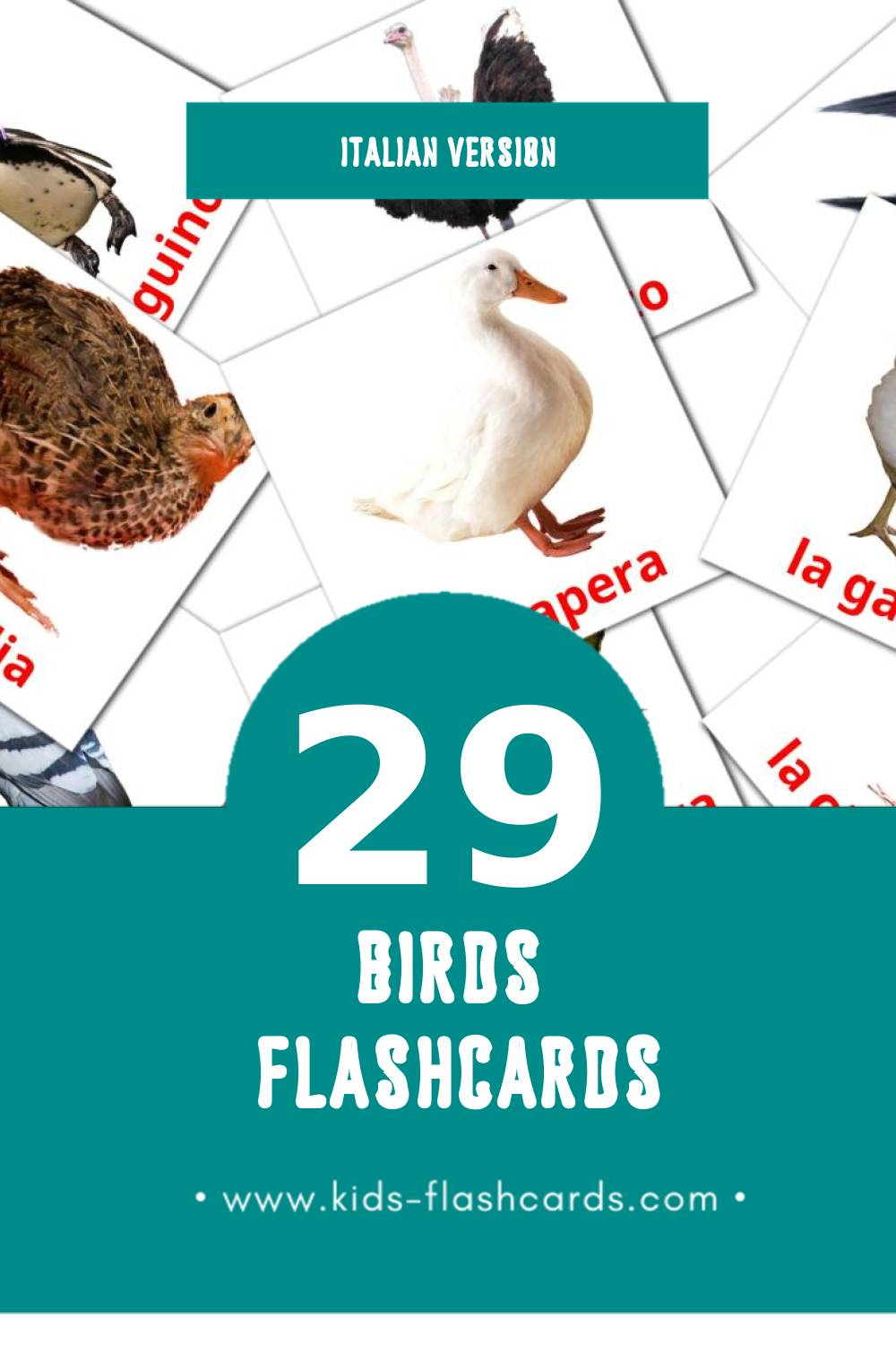 Visual Uccelli Flashcards for Toddlers (29 cards in Italian)