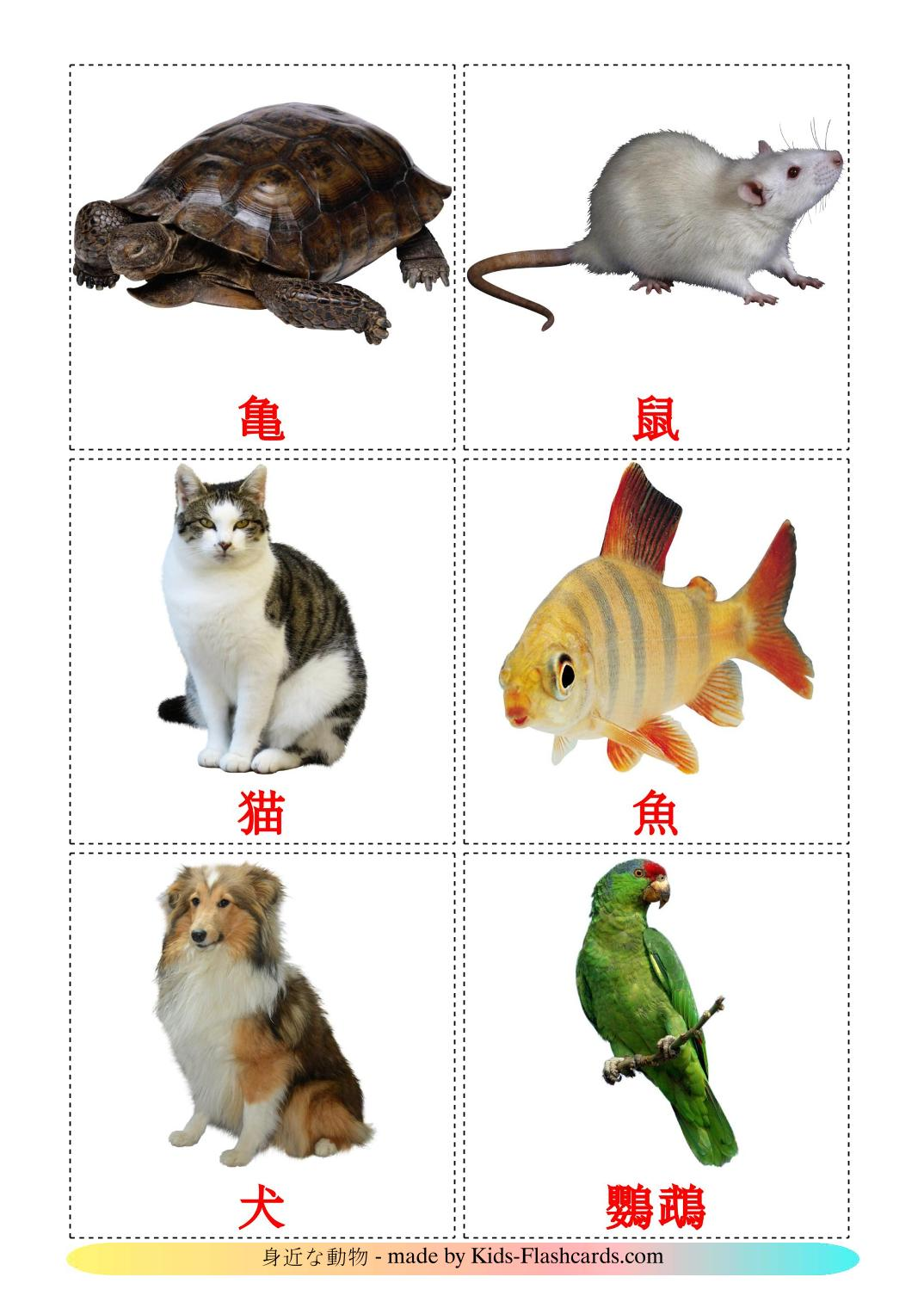 Domestic animals - 10 Free Printable japanese Flashcards