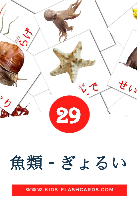 29 魚類 - ぎょるい Picture Cards for Kindergarden in japanese