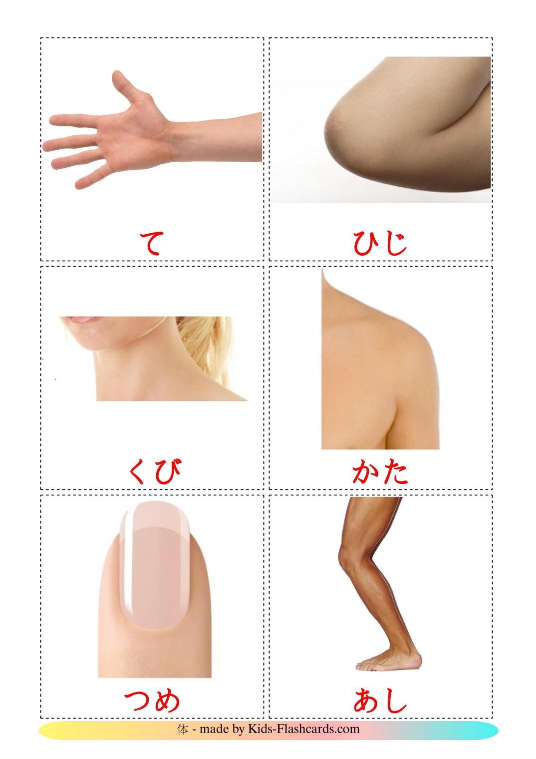 Body Parts - 26 Free Printable japanese Flashcards