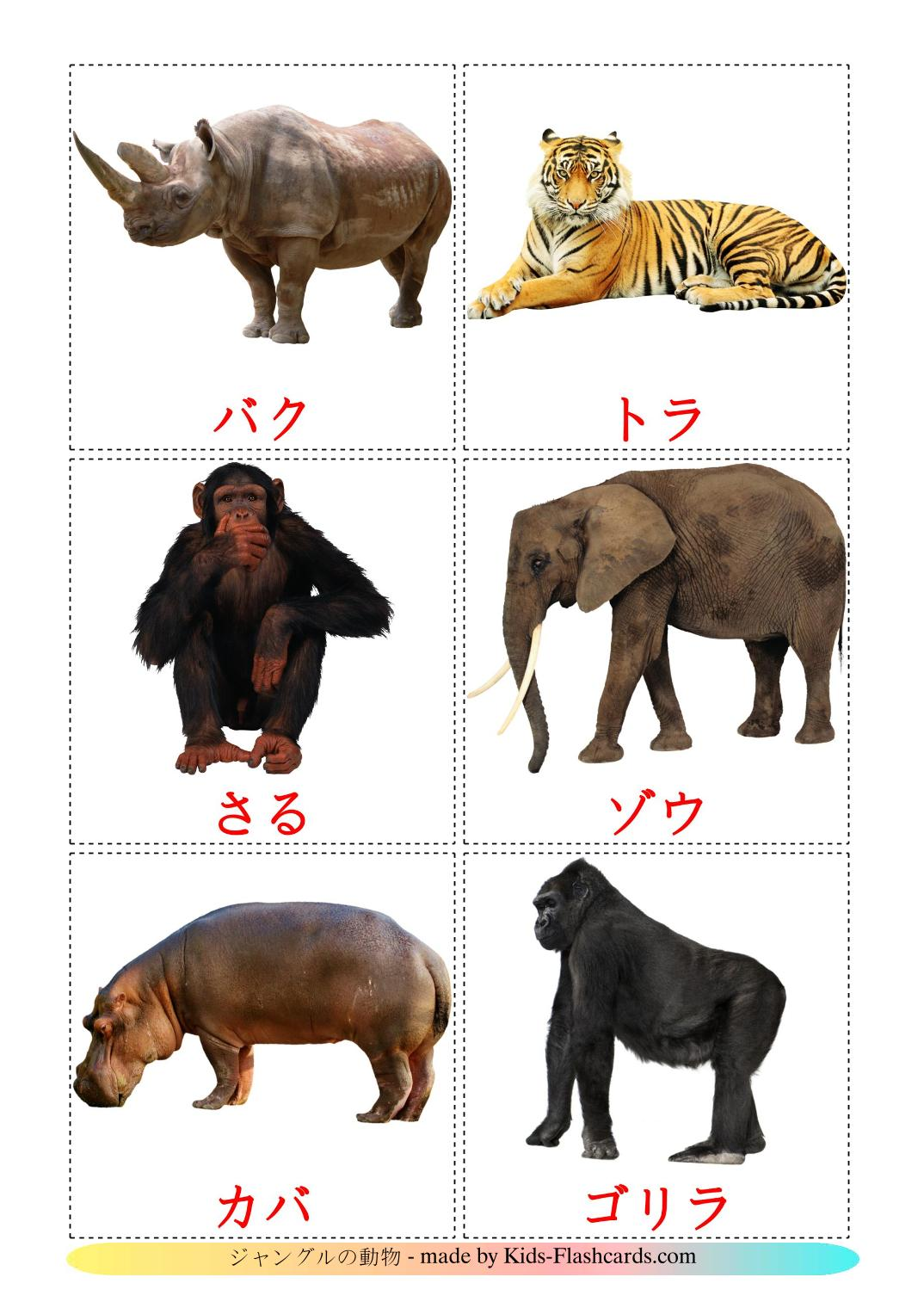 Jungle animals - 21 Free Printable japanese Flashcards