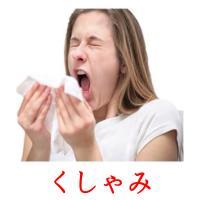 くしゃみ picture flashcards