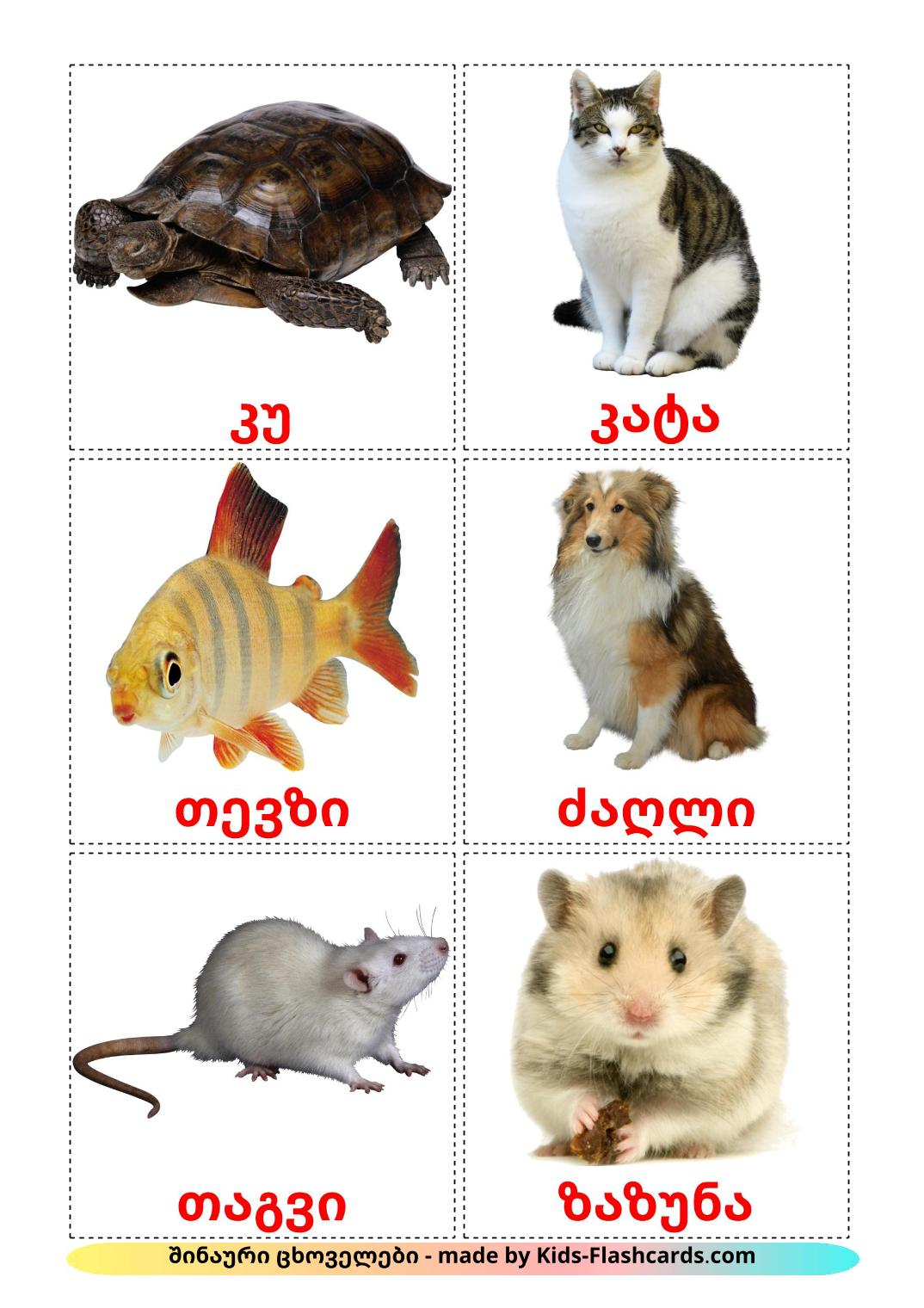 Domestic animals - 10 Free Printable georgian Flashcards