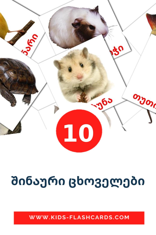 10 შინაური ცხოველები Picture Cards for Kindergarden in georgian