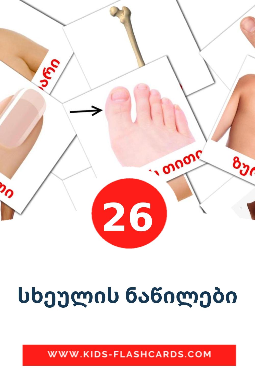 სხეულის ნაწილები на грузинском для Детского Сада (26 карточек)