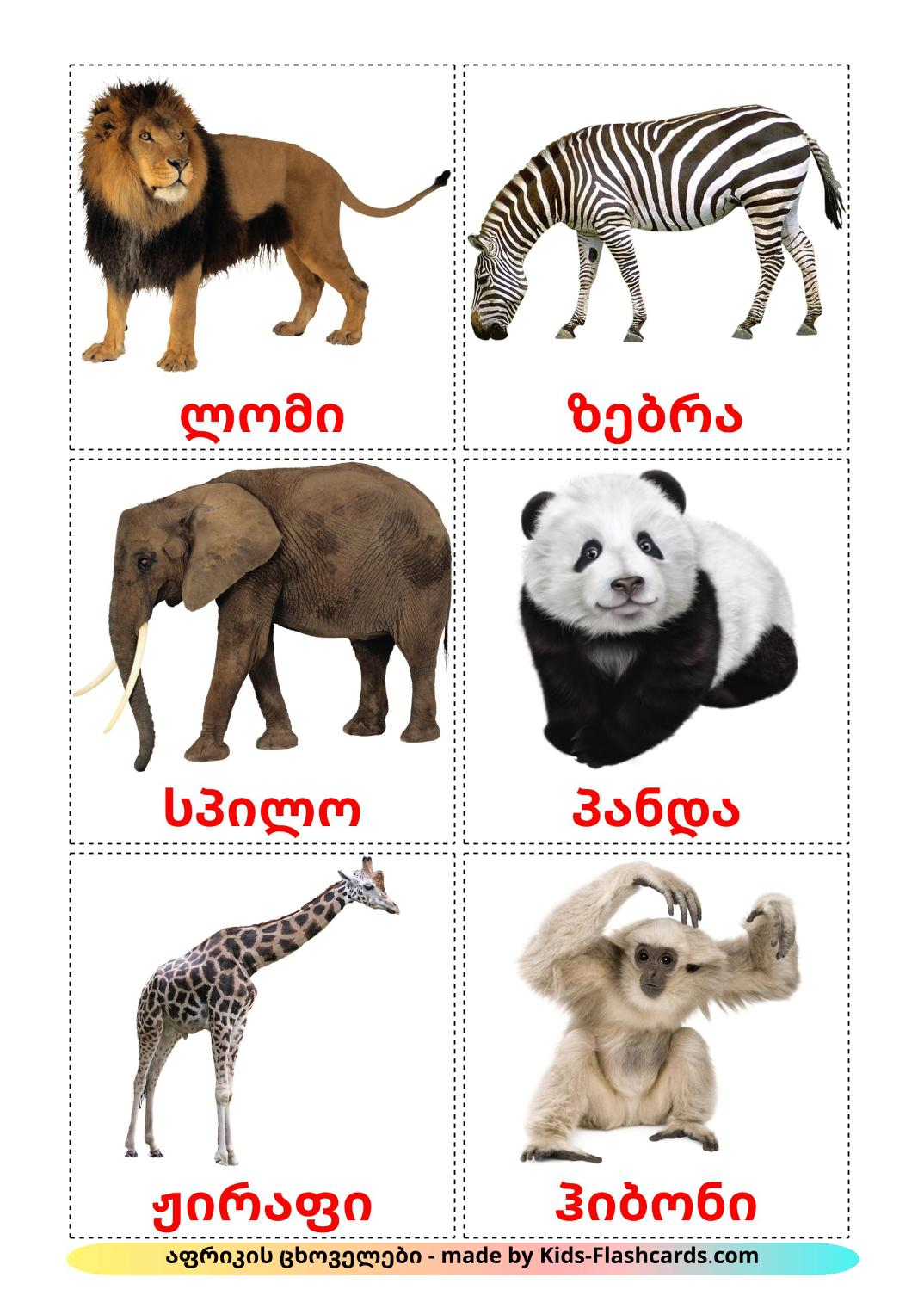 Jungle animals - 21 Free Printable georgian Flashcards