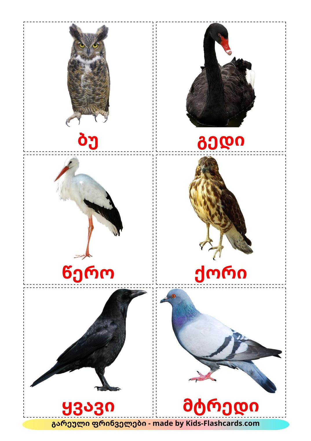 Wild birds - 18 Free Printable georgian Flashcards