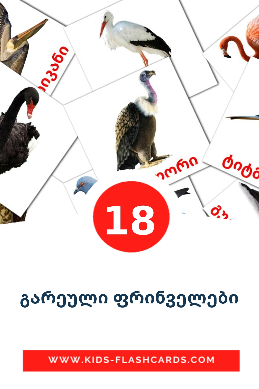 18 გარეული ფრინველები Picture Cards for Kindergarden in georgian