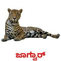 ಜಾಗ್ವಾರ್ picture flashcards