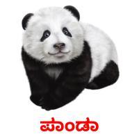 ಪಾಂಡಾ picture flashcards