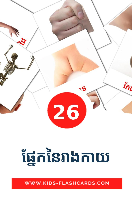 26 ផ្នែកនៃរាងកាយ Picture Cards for Kindergarden in khmer