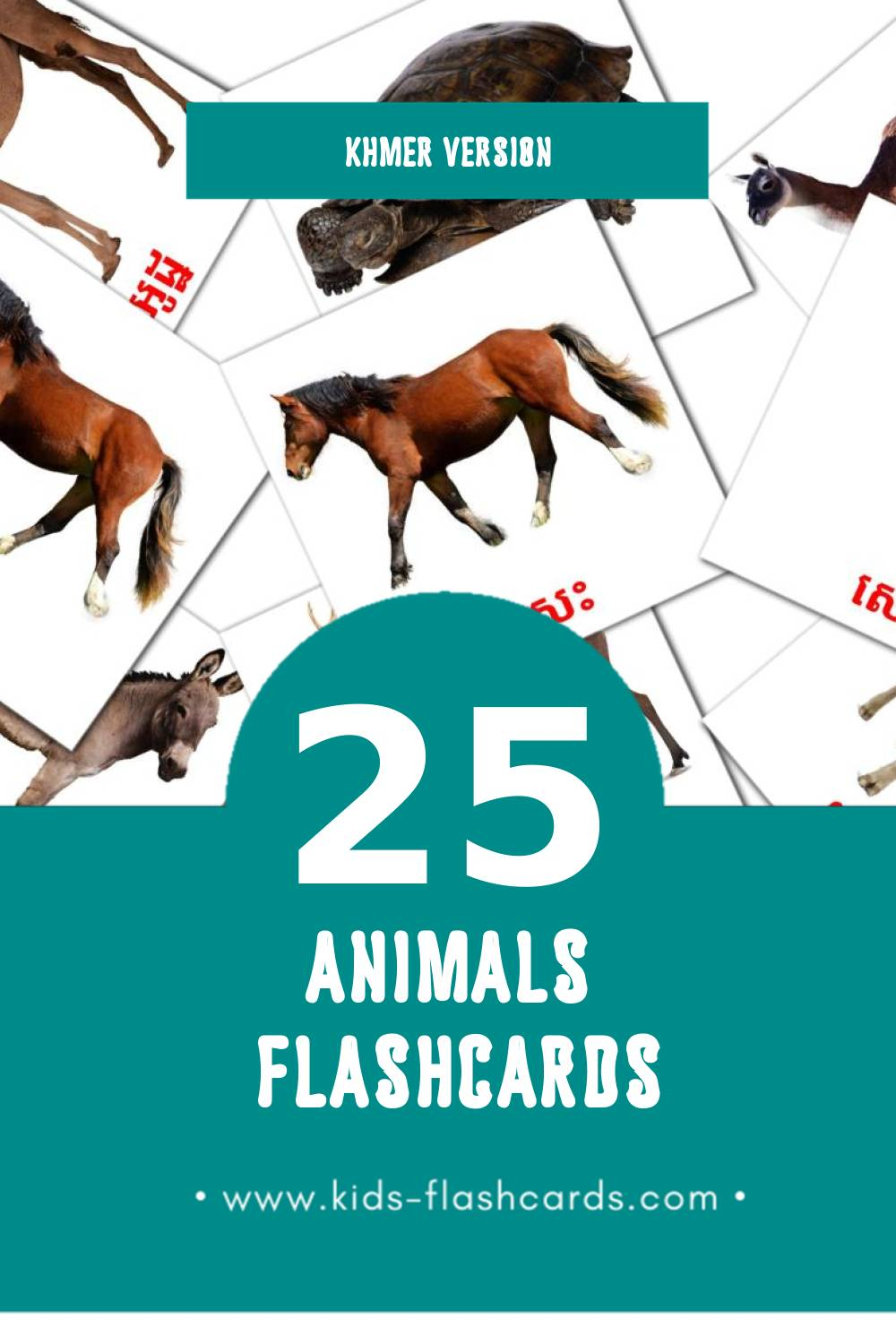 Visual sat Flashcards for Toddlers (15 cards in Khmer)