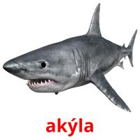 akýla picture flashcards