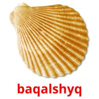 baqalshyq picture flashcards