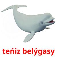 teńіz belýgasy picture flashcards