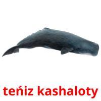 teńіz kashaloty picture flashcards
