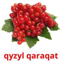qyzyl qaraqat picture flashcards