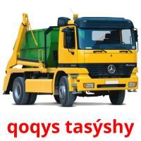 qoqys tasýshy picture flashcards