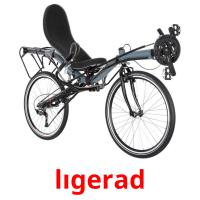 lıgerad picture flashcards