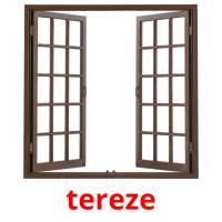 tereze picture flashcards