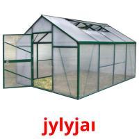 jylyjaı picture flashcards