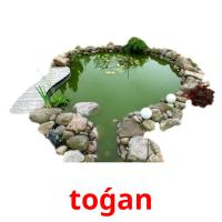 toǵan picture flashcards