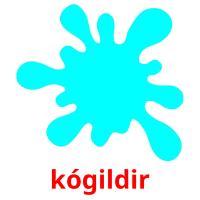 kógіldіr picture flashcards