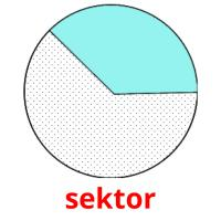 sektor picture flashcards