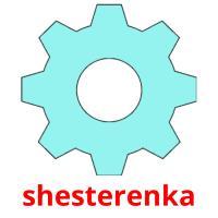 shesterenka picture flashcards